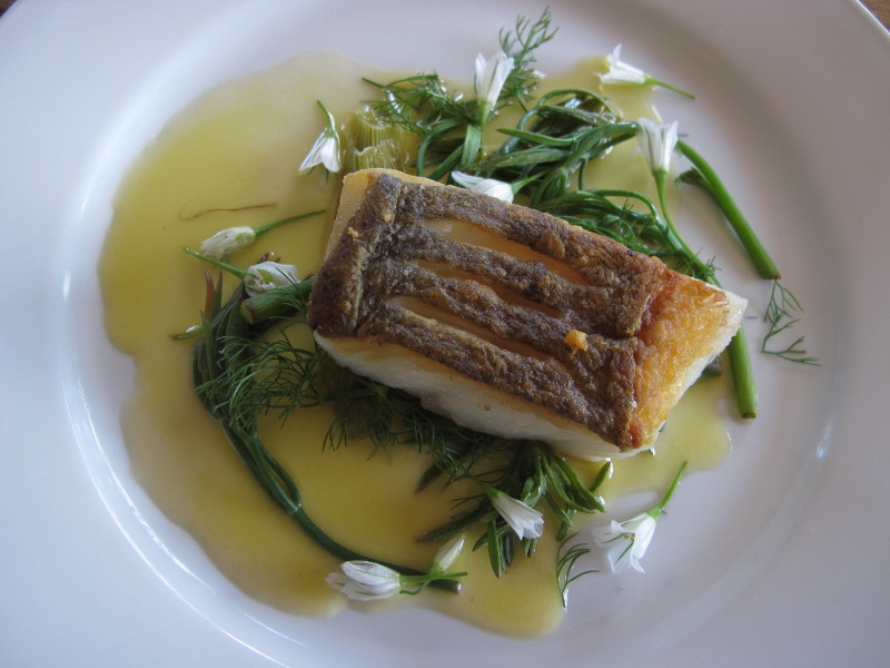 Pollack with rock samphire, three cornered leek flowers & lemon dressing_1