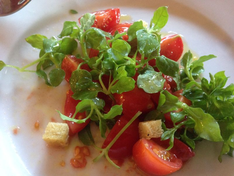 Chickweed and local tomato salad with rosehip syrup dressing